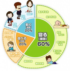 生活習慣の影響割合(イラスト付)