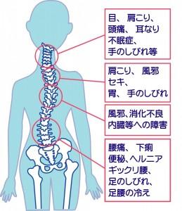 背骨の歪みと病気